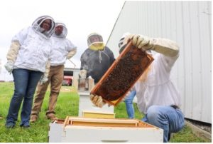 A photo of Travis Harper demonstrating beekeeping basics for the Heroes to Hives program.